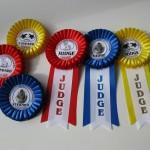 Наградные розетки и ленты выпускникам