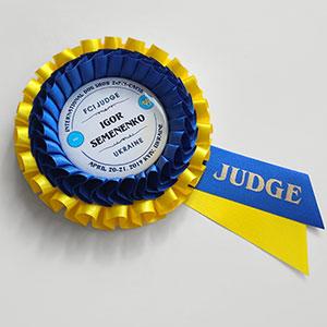 Наградная розетка «Росинка Лайт» - орден с вымпелом
