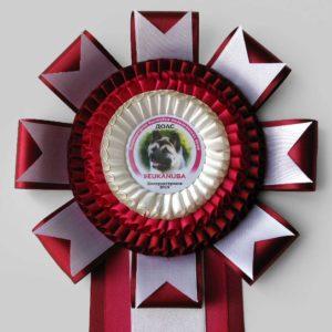 Наградная розетка «Екануба 2015-М»