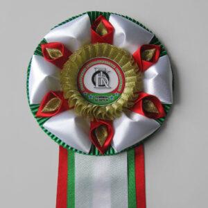 Наградная розетка Масленица-2